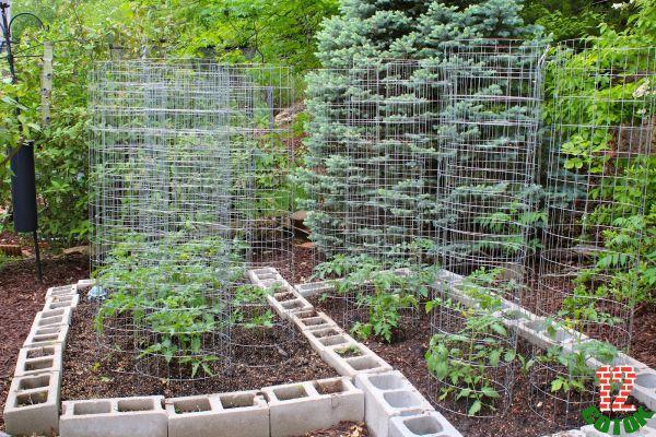 Как сделать красивым огород